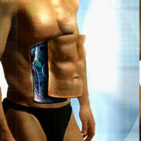 O corpo híbrido