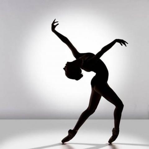 Curiosidades sobre o ballet5